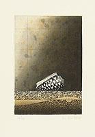 Chris van Otterloo born 1950 - Rembrandt's Cone Shell