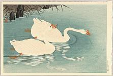 Koson Ohara 1877-1945 - Swimming Geese