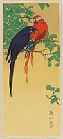 Sozan Ito 1884-? - Two Macaws