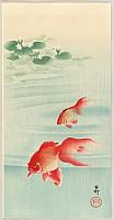 Koson Ohara 1877-1945 - Two Goldfish