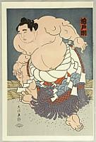 Daimon Kinoshita born 1946 - Grand Champion Kashiwado - Sumo