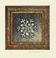 Chris van Otterloo born 1950 - Snow Crystal