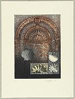 Chris van Otterloo born 1950 - Baroque Shells
