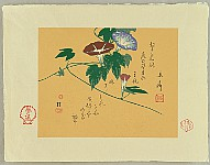 Ligustro (Giovanni Berio) 1924- - Morning Glories by Hiroshige