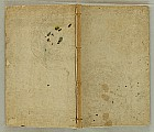 Bairei Kono 1844-1895 - Picture Book of Hundred Birds - Bairei Hyakucho Gafu