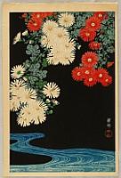 Koson Ohara 1877-1945 - Chrysanthemum and Stream