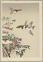 Koitsu Tsuchiya 1870-1949 - Sparrows and Snow Covered Nandin