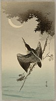 Gesso Yoshimoto 1881-1936 - Kingfisher and Crescent Moon