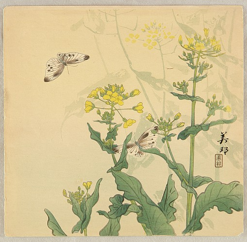 Biho Takahashi 1873-? - Butterflies and Mustard