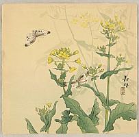 Biho Takahashi 1873-? - Butterflies and Mustard