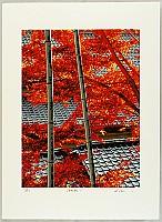 Hideaki Kato born 1954 - Late Autumn