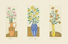 not identified - Flowers - Sway