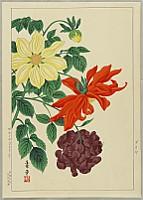Hodo Nishimura active 1930s - Dahlia