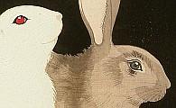 Hodo Nishimura active 1930s - Rabbits
