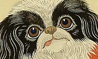 Koson Ohara 1877-1945 - Pekingese Dog and Bush Warbler