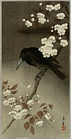 Keinen Imao 1845-1923 - Crow and Cherry Blossoms