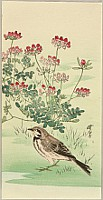 Gyosui Suzuki 1898-? - Sparrow and Flower
