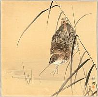 Seiko  active ca. 1890 - 1900 - Sandpiper
