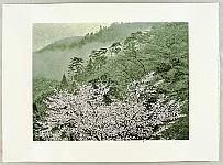 Yuichiro Kato born 1926 - Kozan Temple in the Spring
