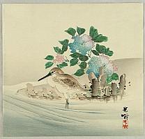Koga Iijima 1829 - 1900 - Sand Piper