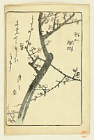 Hiroshige Ando 1797-1858 - Picture of Souvenirs from Edo - Plum Orchard at Imado