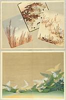 Korin Furuya 1875-1910 - Flowers and Plants Patterns - 2 sheets